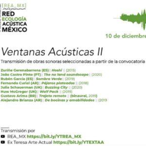 «Pájaros plateados» en Ventanas Acústicas II